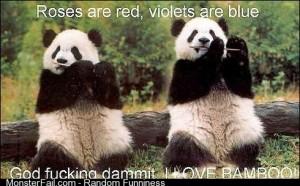 Panda poetry