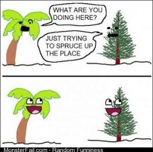 Lol Spruce