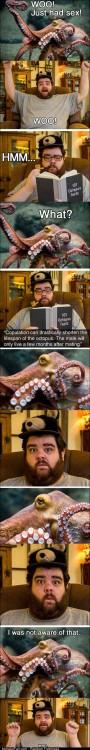 Funny Pics Octopus
