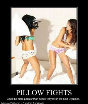 Funny Pics Pillow Fights