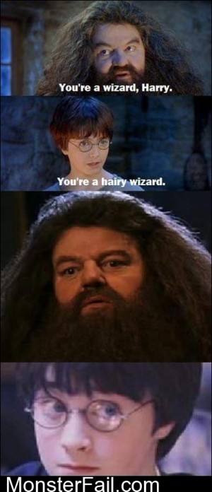 Youre A Wizzard Harry