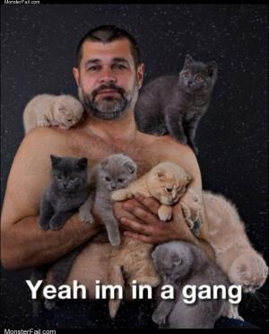 A gang