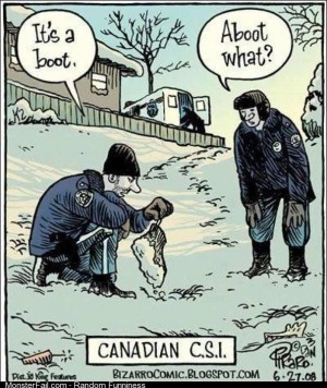 As a Canadian I find this funny