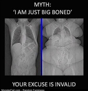 Funny Pics Just Big Boned