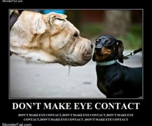 No eye contact