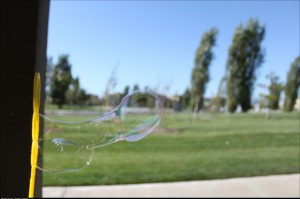 So I was taking pictures of bubbles