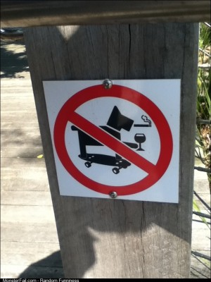 No smoking drinking dogs please