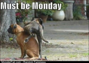 Funny Pics Must Be Monday