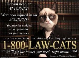 Need an attorney Call
