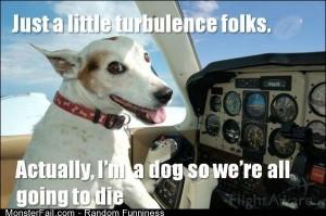 Funny Pics The Dog Pilot