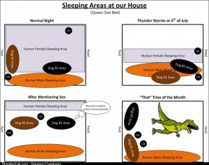Sleeping Areas