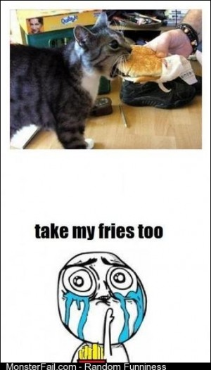 Take My Fries Too