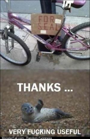 Bike for seal