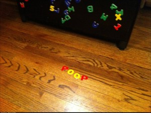 My little girl said there was poop on the floor