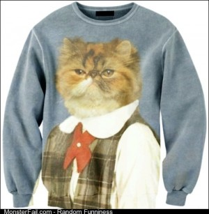 Ill give 80 to anyone who can get me this sweater