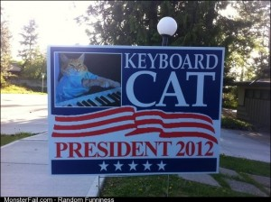 This is who I will be voting for this election