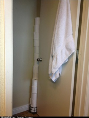 This is what happens when your 6 year old is in charge of refilling the toilet paper holder