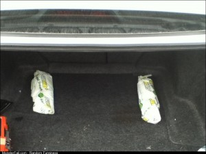 Just installed two 12 subs in my car