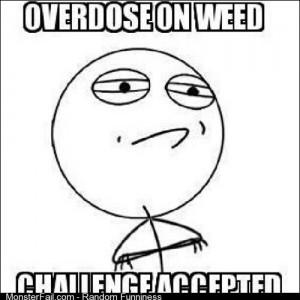 Igotthis weed Maryjane ganja bud hmm
