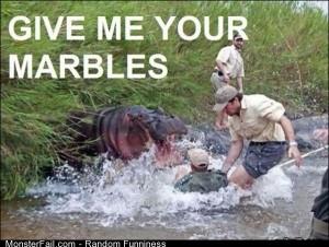 Funny Pics Hungry Hippo