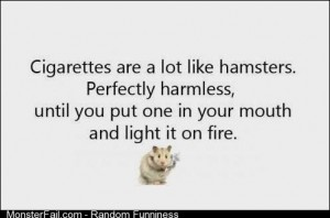 Are A Lot Like Hamsters