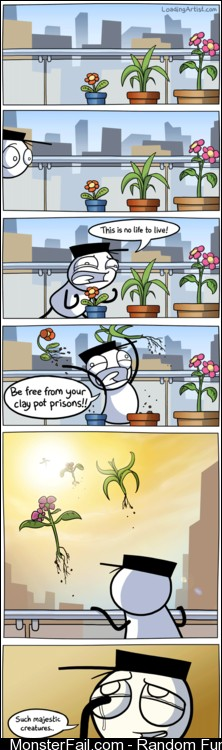 Plants Deserve Much Better