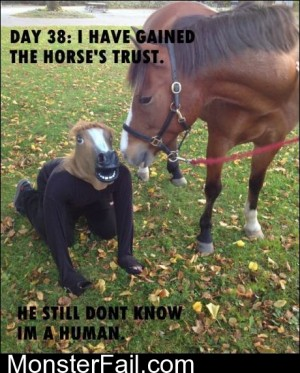 I Have Gained The Horses Trust
