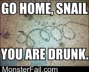 Go Home Snail You Are Drunk