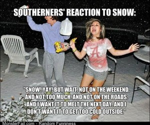 Funny Pics Southern Snow