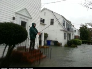 Funny Pics Sandy