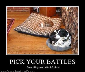 Pick Your Battles