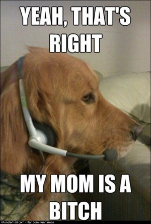 Funny Pics Xbox Live Dog