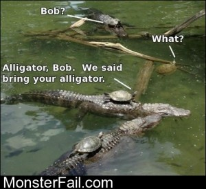 Bring Your Alligator