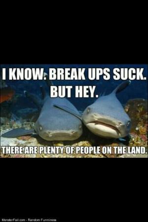 Oh sharks