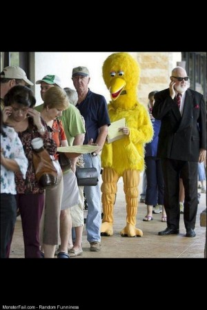 Big bird forget to vote bitch