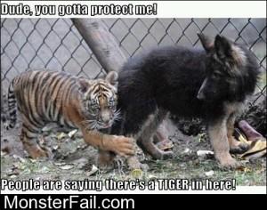 You Gotta Protect Me