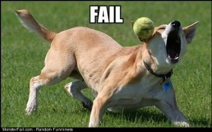 Doggy fail