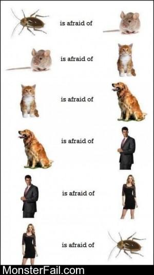 Fear Circle