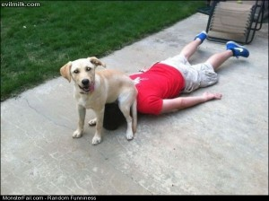 Funny Pics Good Place To Sit