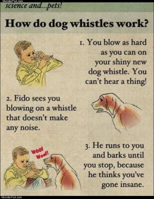 How dog whistles work