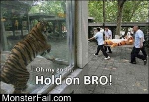 Hold On Bro