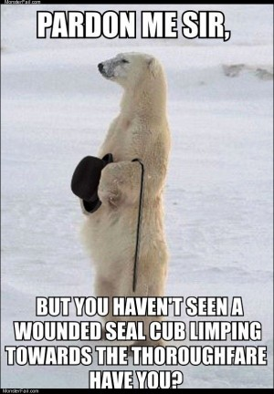Gentleman polar bear
