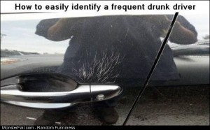 Funny Pics Frequent Drunk