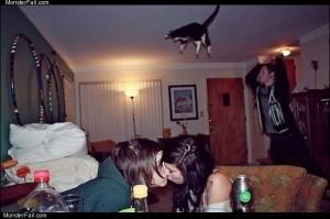 Cat bombing