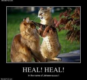 Healer cat
