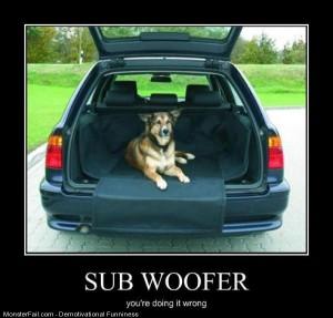 Sub Woofer