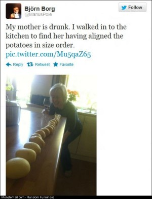 Funny Pics The Drunk Mom