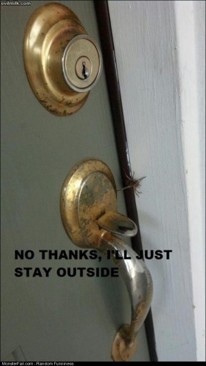 Funny Pics Not Going Inside