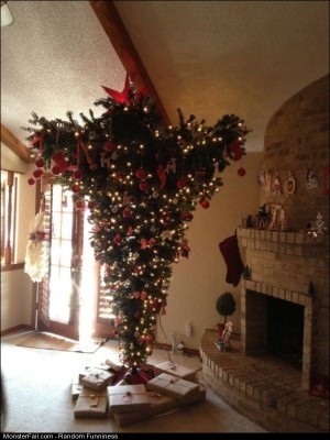 Funny Pics Upside Down Tree