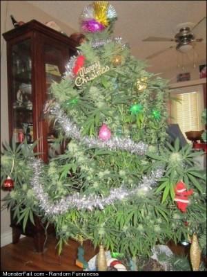 Funny Pics Merry Christmas